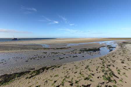 wadden: The Wadden Sea