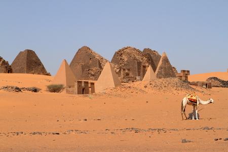 Caravan in the Sahara from Sudan near Meroe