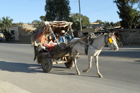 the coachman: Horse carriage in the streets of Mekele in Ethiopia