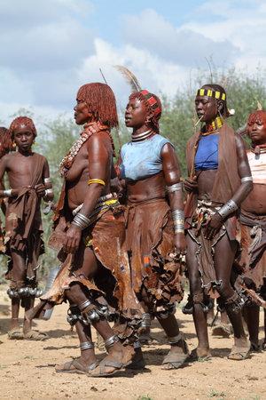 De stam van Hamar in de Omo-vallei van Ethiopië Redactioneel