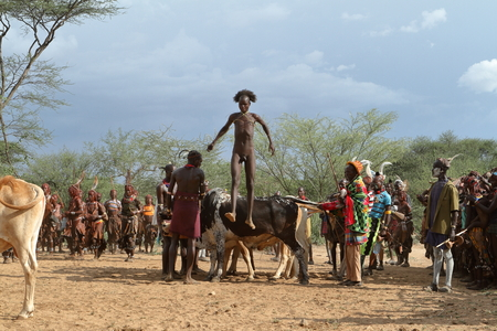 The Bull Jumping Ceremony in the Omo Valley of Ethiopia