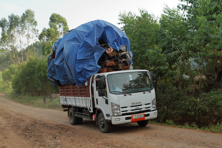 Trucks and transporters in Africa