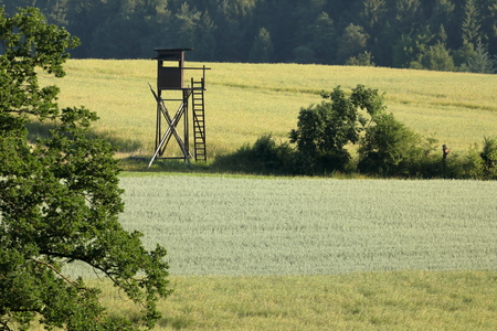 Hunters chair or high seat in the countryside Stock Photo
