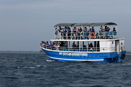 Whale watching at Trincomalee in Sri Lanka, 06 August 2017