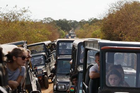 Safari in Yala National Park in Sri Lanka