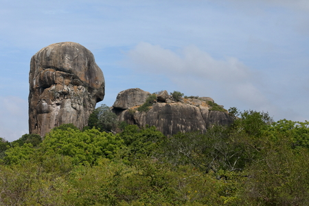 The Yala National Park in Sri Lanka
