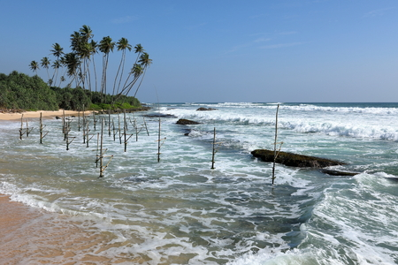 The stilt fishermen of Sri Lanka at the beach of Koggala