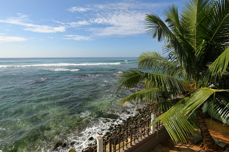 The beach and coast near Galle in Sri Lanka