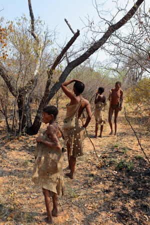 The San tribe in Namibia Stok Fotoğraf