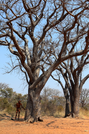 San people in Namibia 版權商用圖片 - 111681361