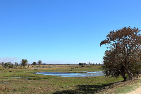 Landscape of the Okavango Delta in Namibia