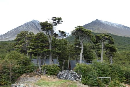 The National Park of Tierra del Fuego in Argentina Imagens
