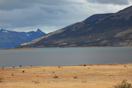 The landscape and nature in Patagonia