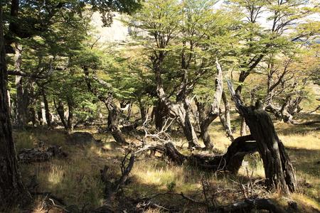 Der Nationalpark Los Glaciares bei El Chalten