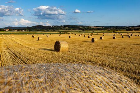 Campo de rastrojo con fardos de paja después de la cosecha Foto de archivo
