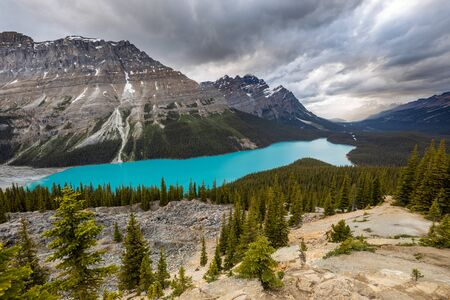 Lake Peyto of Banff National Park in Canada