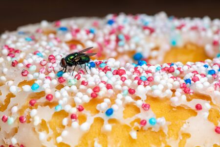 A Gold Fly on Food Stock Photo