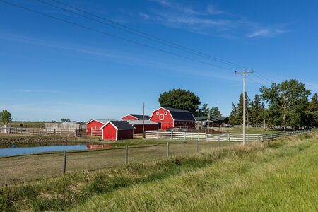 Farm and Agriculture in Alberta Canada Stok Fotoğraf - 130127769