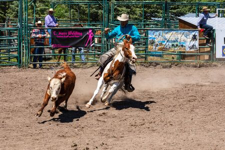 Cowboys and Rodeo Games at Pincher Creek Canada, June 15, 2019