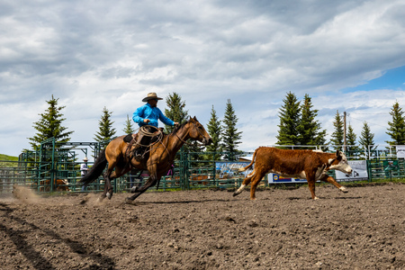 Cowboys and Rodeo Games at Pincher Creek Canada