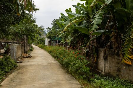 Path in the Village of Phong Nha in Vietnam