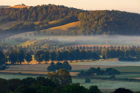 Early morning with fog in the Werry Valley in Germany
