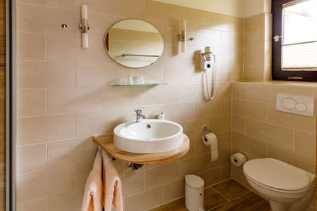 Bathroom WC and shower in a hotel