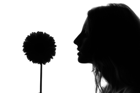 Silhouette of the woman with a flower on a white background photo