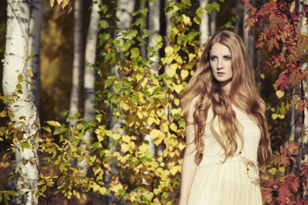wood nymph: Fashion portrait of a beautiful young woman in autumn forest. Beauty autumn Stock Photo