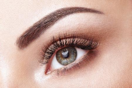 Female Eye with Extreme Long False Eyelashes. Eyelash Extensions. Makeup, Cosmetics, Beauty. Close up, Macro 版權商用圖片