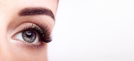 Oeil féminin avec des faux cils extrêmement longs. Extensions de cils. Maquillage, Cosmétiques, Beauté. Gros plan, Macro