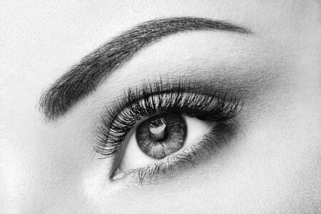 Female Eye with Extreme Long False Eyelashes. Eyelash Extensions. Makeup, Cosmetics, Beauty. Close up, Macro Reklamní fotografie