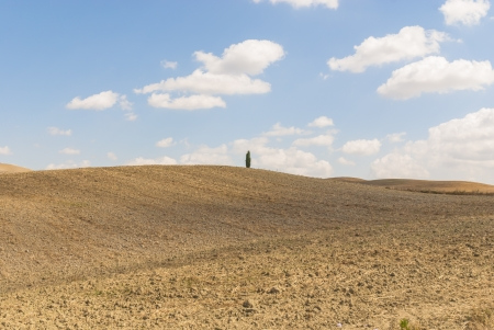 characterised: The Val d%uFFFDOrcia, or Valdorcia, a region of Tuscany, central Italy  It is characterised by gentle, carefully cultivated hills   Stock Photo