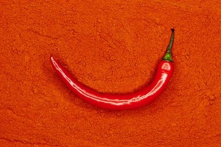 briskness: fresh red hot chili pepper on paprika powder Stock Photo