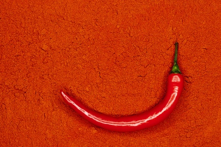 fresh red hot chili pepper on paprika powder photo
