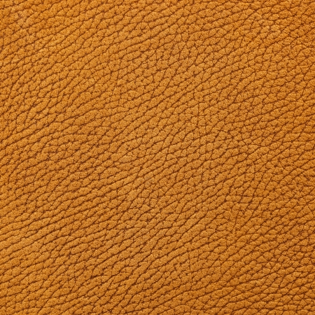 Light brown nubuck leather surface as background