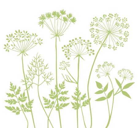 silvestres: Hierbas salvajes siluetas A