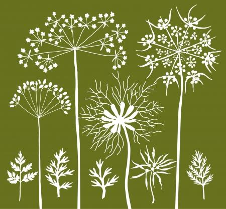 grasses: Wild grasses silhouettes B Illustration