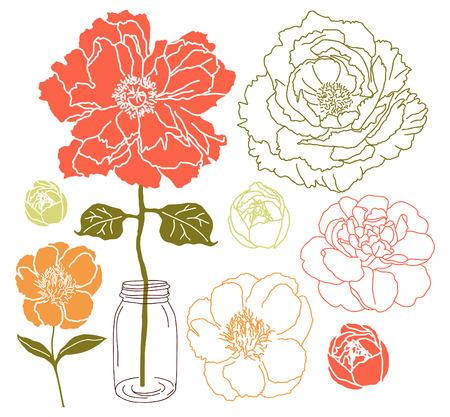 flor: flor de peonía y rosa