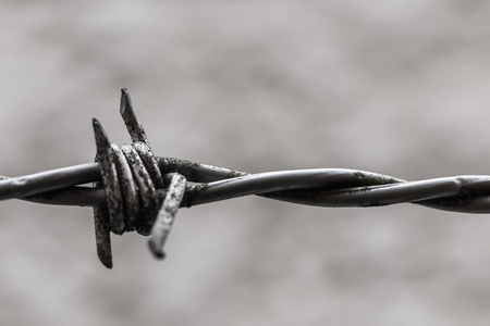 Rusted dangerous wire of fence