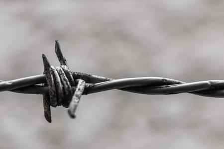 Verrosteter gefährlicher Draht des Zauns