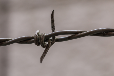 dangerous: Rusted dangerous wire of fence