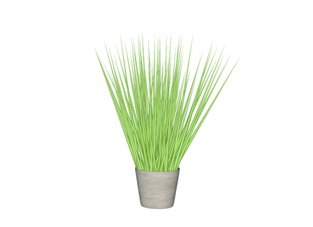 potting soil: Plant Pot. 3d Illustration Isolated White Background Stock Photo