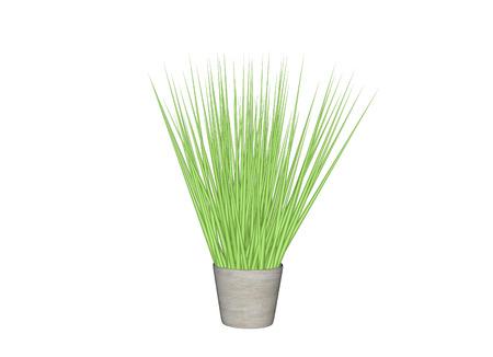 potting soil: Plant Pot. 3d Illustration Isolated White Background Stock Photo