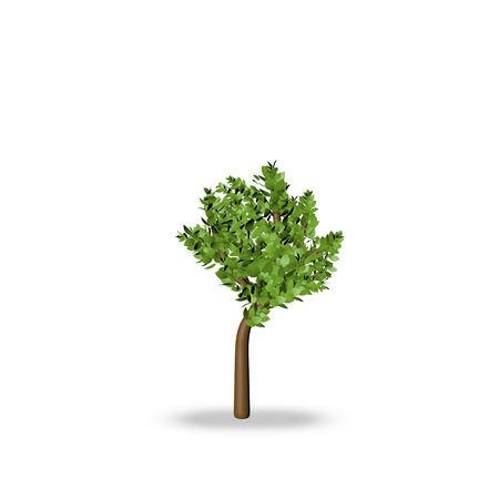 small tree: Small tree 3d render on white background