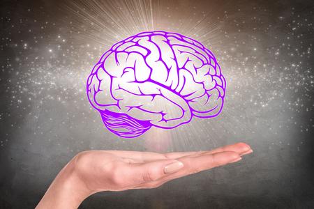 mente humana: Dibujado cerebro se cernía sobre la mano humana en el fondo gris de la pared