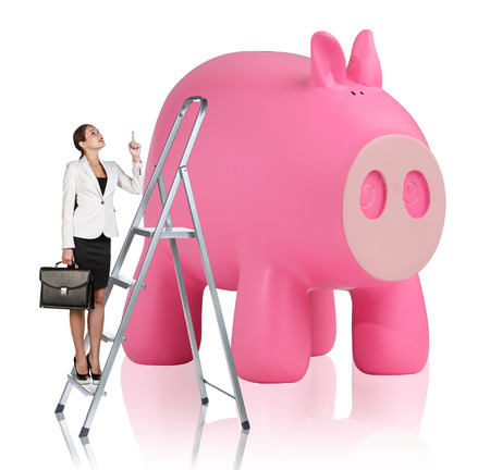 stepladder: Business woman rises up on the stepladder near big piggy bank isolated on white