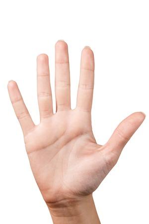 Hand toont vijf vingers op een witte achtergrond Stockfoto