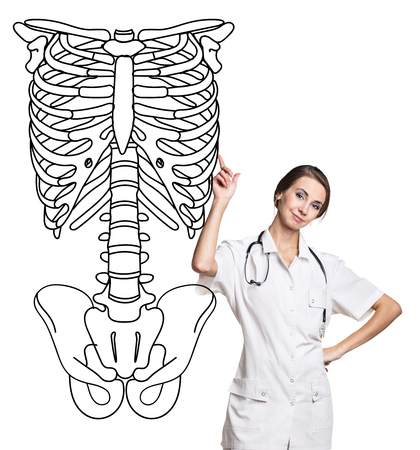 Doctor woman pointing on drawing human skeleton.
