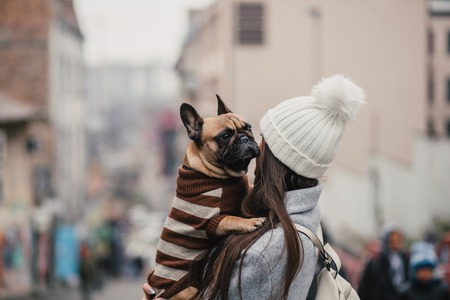 Beautiful brunette woman holding her adorable French bulldog. Imagens